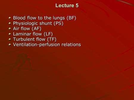 Lecture 5 Blood flow to the lungs (BF) Physiologic shunt (PS) Air flow (AF) Laminar flow (LF) Turbulent flow (TF) Ventilation-perfusion relations.