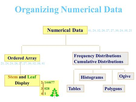 2 144677 3 028 4 1 Organizing Numerical Data Numerical Data Ordered Array Stem and Leaf Display Frequency Distributions Cumulative Distributions Histograms.