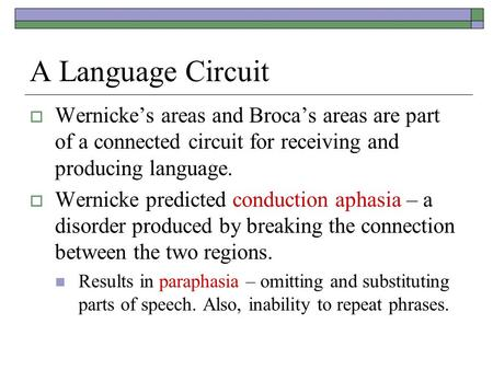 A Language Circuit  Wernicke's areas and Broca's areas are part of a connected circuit for receiving and producing language.  Wernicke predicted conduction.