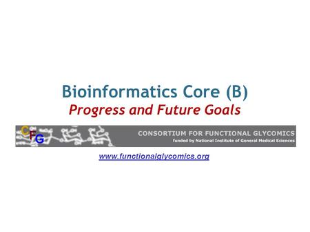 Bioinformatics Core (B) Progress and Future Goals www.functionalglycomics.org.