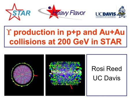  production in p+p and Au+Au collisions at 200 GeV in STAR Rosi Reed UC Davis.