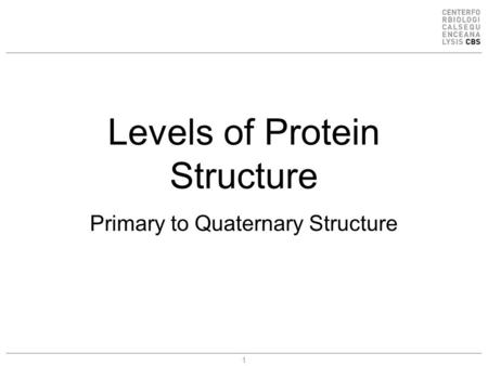 1 Levels of Protein Structure Primary to Quaternary Structure.