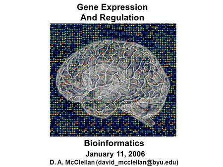 Gene Expression And Regulation Bioinformatics January 11, 2006 D. A. McClellan