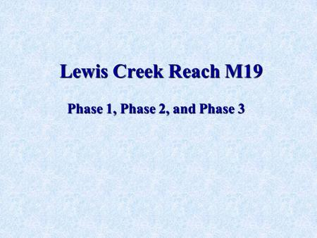 Lewis Creek Reach M19 Phase 1, Phase 2, and Phase 3.