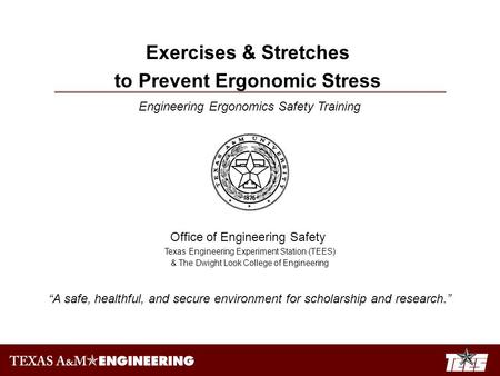 Engineering Ergonomics Safety Training Office of Engineering Safety Texas Engineering Experiment Station (TEES) & The Dwight Look College of Engineering.