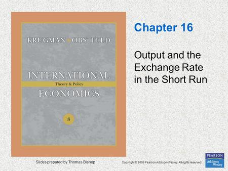 Slides prepared by Thomas Bishop Copyright © 2009 Pearson Addison-Wesley. All rights reserved. Chapter 16 Output and the Exchange Rate in the Short Run.