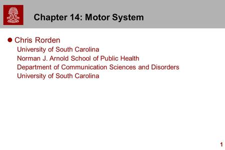 1 Chapter 14: Motor System Chris Rorden University of South Carolina Norman J. Arnold School of Public Health Department of Communication Sciences and.