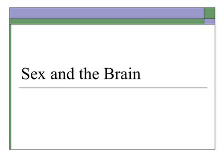 Sex and the Brain.