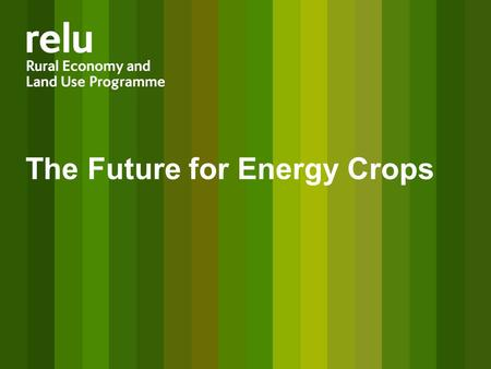 The Future for Energy Crops. Diverse drivers impact on land use Policy Drivers Climate change Energy security Ecosystem Services Rural livelihoods Food.