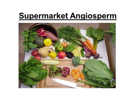 Supermarket Angiosperm. True Fruits -A fruit is a ripened ovary -Carpels hold fertilized ovules -Depending on the type of plant, the mature ovary may.