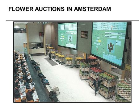 FLOWER AUCTIONS IN AMSTERDAM. Ad Auctions March 16, 2007.