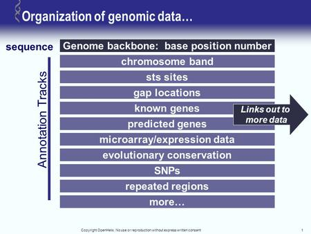 Copyright OpenHelix. No use or reproduction without express written consent1 Organization of genomic data… Genome backbone: base position number sequence.
