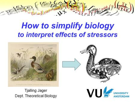 Tjalling Jager Dept. Theoretical Biology How to simplify biology to interpret effects of stressors.