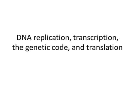 DNA replication, transcription, the genetic code, and translation.