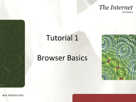 Tutorial 1 Browser Basics. XP Objectives Learn about the Internet and the World Wide Web Learn how Web browser software displays Web pages Learn how Web.