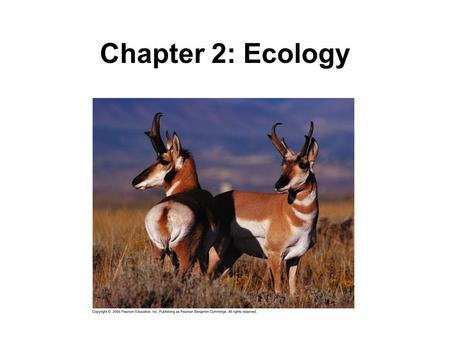 Chapter 2: Ecology.