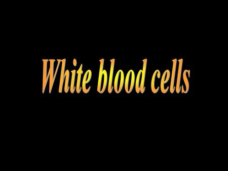 White blood cells.
