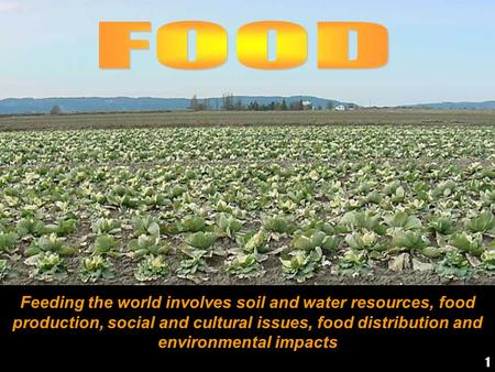 Feeding the world involves soil and water resources, food production, social and cultural issues, food distribution and environmental impacts 1.