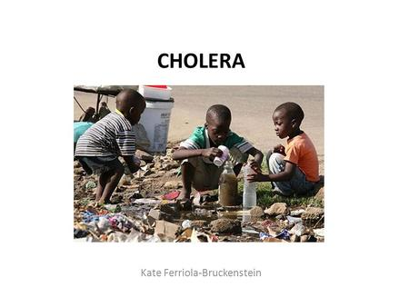 CHOLERA Kate Ferriola-Bruckenstein. Cholera is an acute infection of the small intestine.
