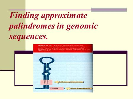 Finding approximate palindromes in genomic sequences.
