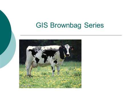 "GIS Brownbag Series. What is GIS? Definitions of GIS: ""A container of maps in digital form"" ""A computerized tool for solving geographic problems"" ""An."