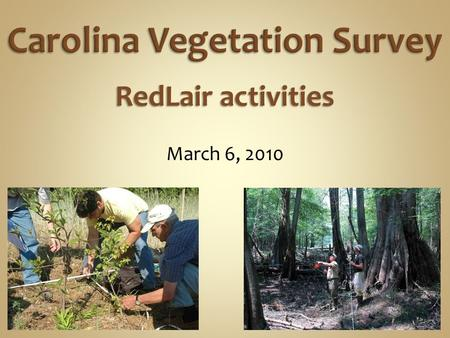 March 6, 2010 RedLair activities. Surveying the best remaining natural vegetation.