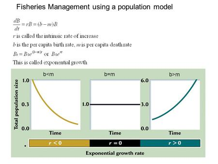 Fisheries Management using a population model bm.