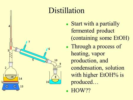 Distillation l l Start with a partially fermented product (containing some EtOH) l l Through a process of heating, vapor production, and condensation,