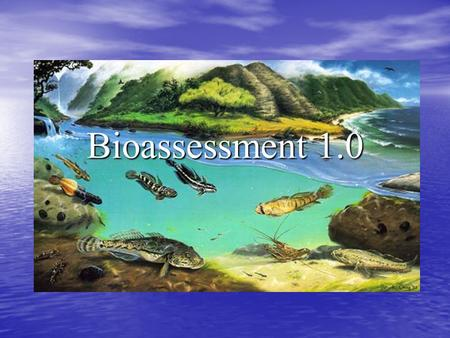 Bioassessment 1.0. Stream Visual Assessment Protocol 1. Turbidity 2. Plant growth 3. Channel Condition 4. Channel Flow Alteration 5. Percent Embeddedness.