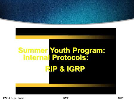 SYPCNSA Department2007 Summer Youth Program: Internal Protocols: RIP & IGRP.