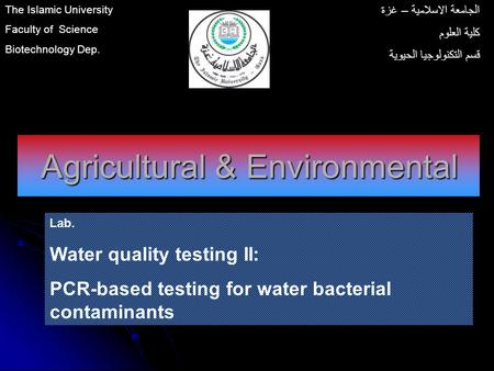 Agricultural & Environmental Lab. Water quality testing II: PCR-based testing for water bacterial contaminants The Islamic University Faculty of Science.