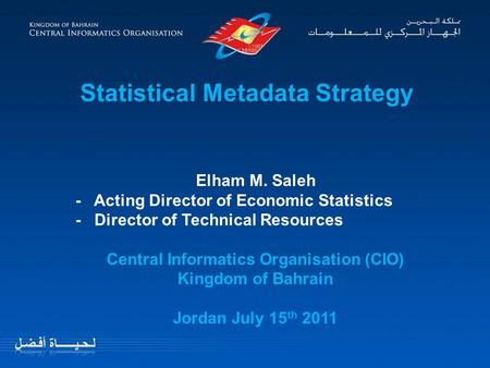 Statistical Metadata Strategy Elham M. Saleh - Acting Director of Economic Statistics - Director of Technical Resources Central Informatics Organisation.