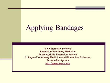 Applying Bandages 4-H Veterinary Science Extension Veterinary Medicine Texas AgriLife Extension Service College of Veterinary Medicine and Biomedical Sciences.