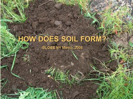 HOW DOES SOIL FORM? GLOBE NY Metro, 2008. Why do we study soil? Because It's A(n) Great integrator Producer and absorber of gases (CO 2 and others) Medium.