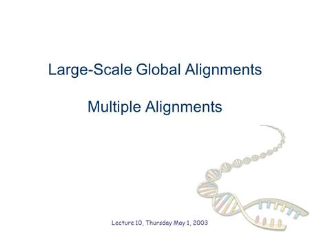 Large-Scale Global Alignments Multiple Alignments Lecture 10, Thursday May 1, 2003.