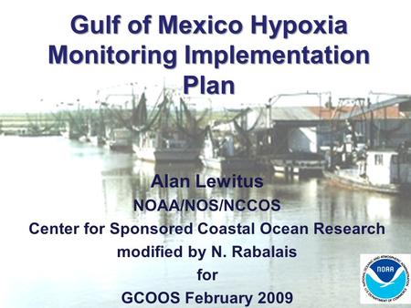 Gulf of Mexico Hypoxia Monitoring Implementation Plan Alan Lewitus NOAA/NOS/NCCOS Center for Sponsored Coastal Ocean Research modified by N. Rabalais for.
