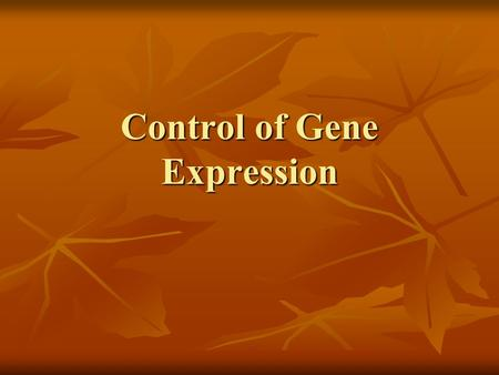 Control of Gene Expression. The Central Dogma From DNA to Proteins DNA RNA Protein Translation Transcription Genotype Phenotype.