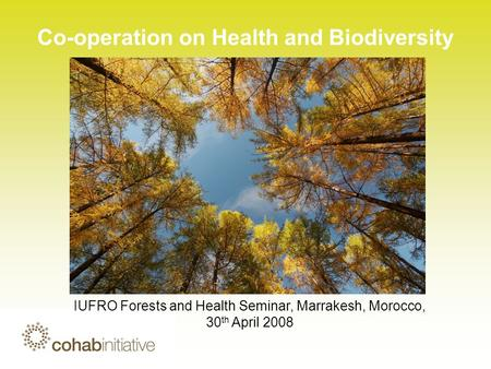 Co-operation on Health and Biodiversity IUFRO Forests and Health Seminar, Marrakesh, Morocco, 30 th April 2008.