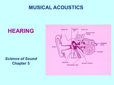 HEARING MUSICAL ACOUSTICS Science of Sound Chapter 5.