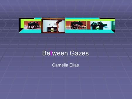 Between Gazes Camelia Elias. aims and focus  look at:  how gender is a performative and constitutive act within cultural frameworks  issues of representation,