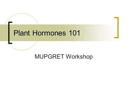 Plant Hormones 101 MUPGRET Workshop.