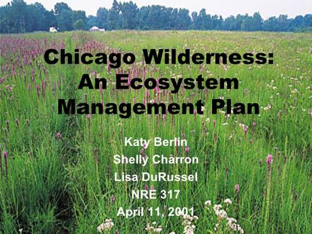 Chicago Wilderness: An Ecosystem Management Plan Katy Berlin Shelly Charron Lisa DuRussel NRE 317 April 11, 2001.