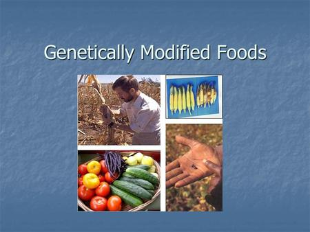 Genetically Modified Foods. What Is Biotechnology? Using scientific methods with organisms to produce new products or new forms of organisms Using scientific.