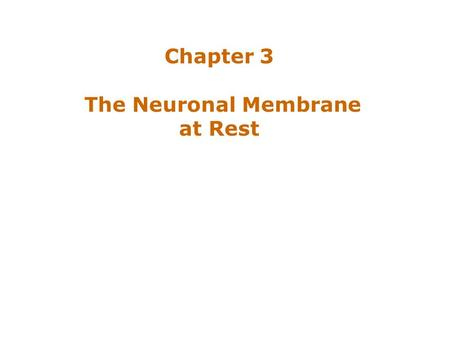 Chapter 3 The Neuronal Membrane at Rest.