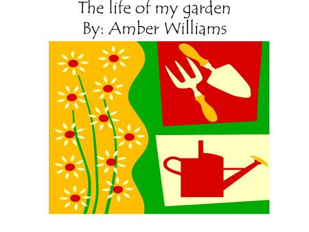 The life of my garden By: Amber Williams. Flowers my home has several different types of trees I also have a large variety of flowers and shrubbery my.