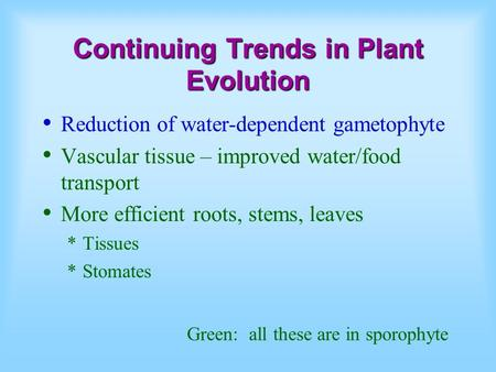 Continuing Trends in Plant Evolution Reduction of water-dependent gametophyte Vascular tissue – improved water/food transport More efficient roots, stems,