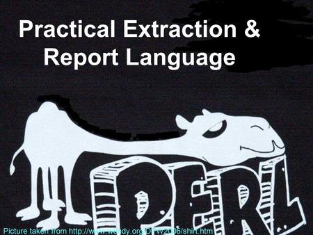 Practical Extraction & Report Language Picture taken from