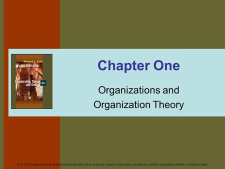Organizations and Organization Theory