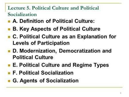 Lecture 5. Political Culture and Political Socialization