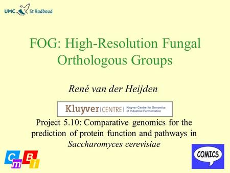FOG: High-Resolution Fungal Orthologous Groups René van der Heijden Project 5.10: Comparative genomics for the prediction of protein function and pathways.